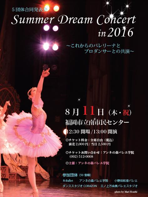 Summer Dream Concert in 2016